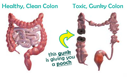 clean colon equals flat tummy
